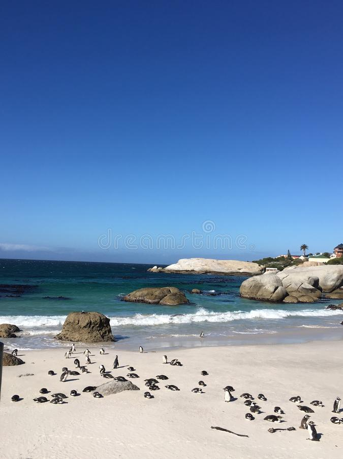 Het Strand van Boluders - Zuid-Afrika stock fotografie