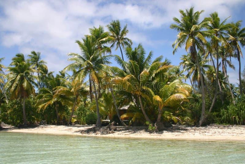 Het strand van Bora van Bora royalty-vrije stock fotografie