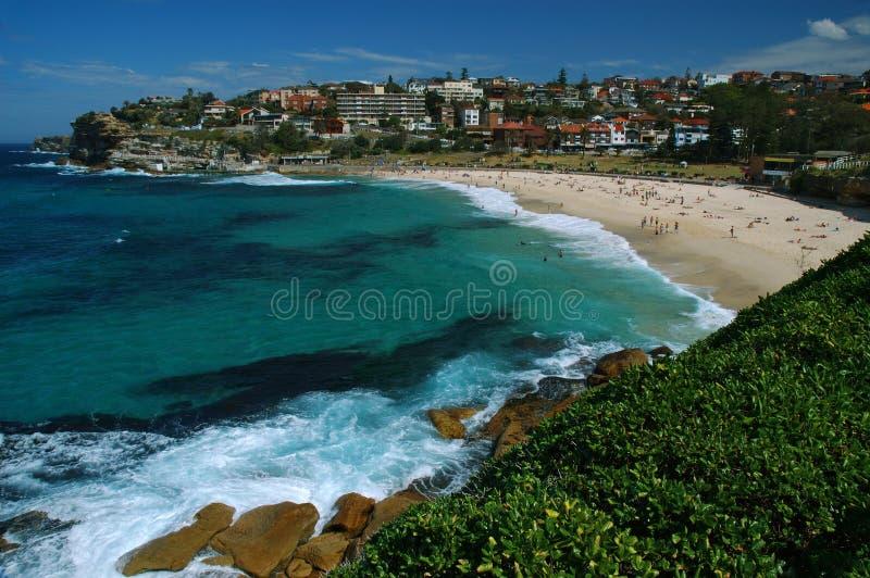 Het strand van Bronte in Sydney stock afbeeldingen