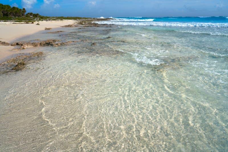 Het strand van Bush van het Cozumeleiland in Riviera Maya royalty-vrije stock foto's