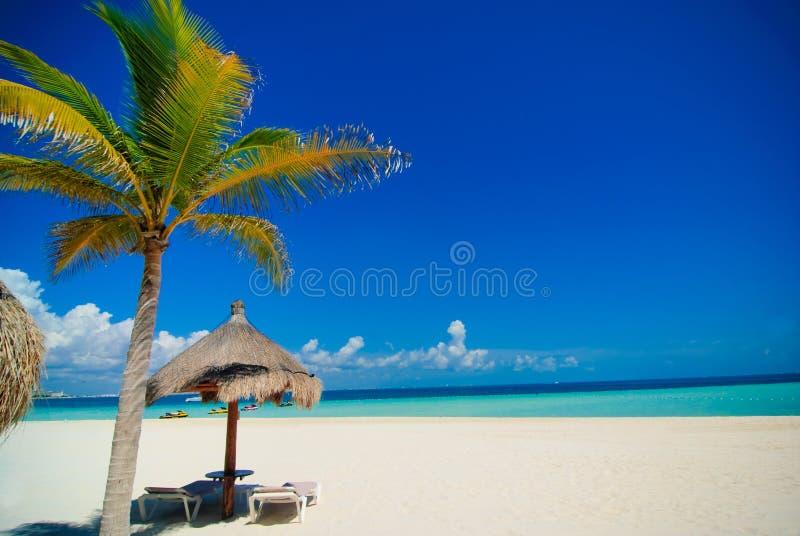 Het strand van Cancun royalty-vrije stock afbeelding