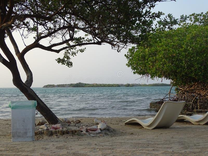 Het Strand van Caribean stock foto's