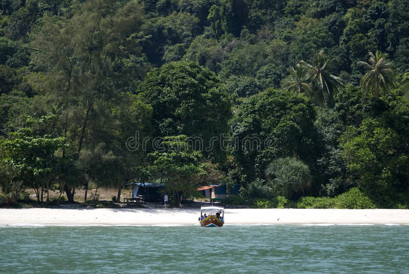 Het Strand van de aap, Penang Nationaal Park, Maleisië stock foto's