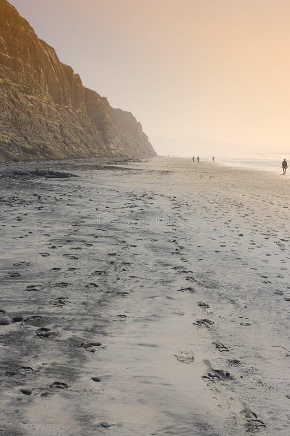Het Strand van de Pijnbomen van Torrey (San Diego) stock foto
