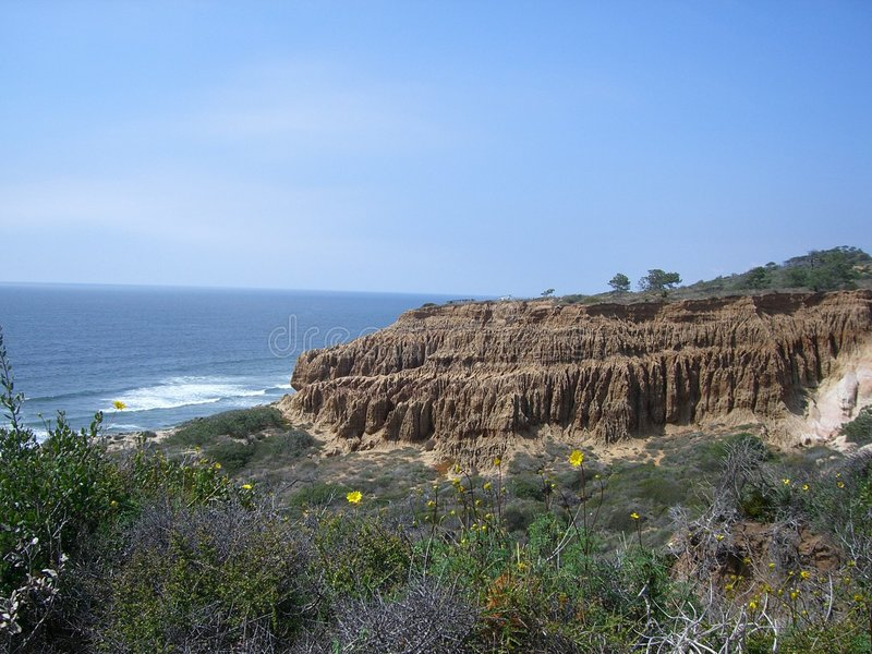 Het Strand van de Staat van de Pijnbomen van Torrey stock afbeelding