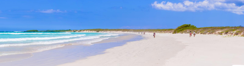 Het strand van de Tortugabaai in Santa Cruz Island in de Galapagos stock fotografie