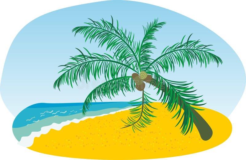 Het strand van de zomer met overzeese zon en palm