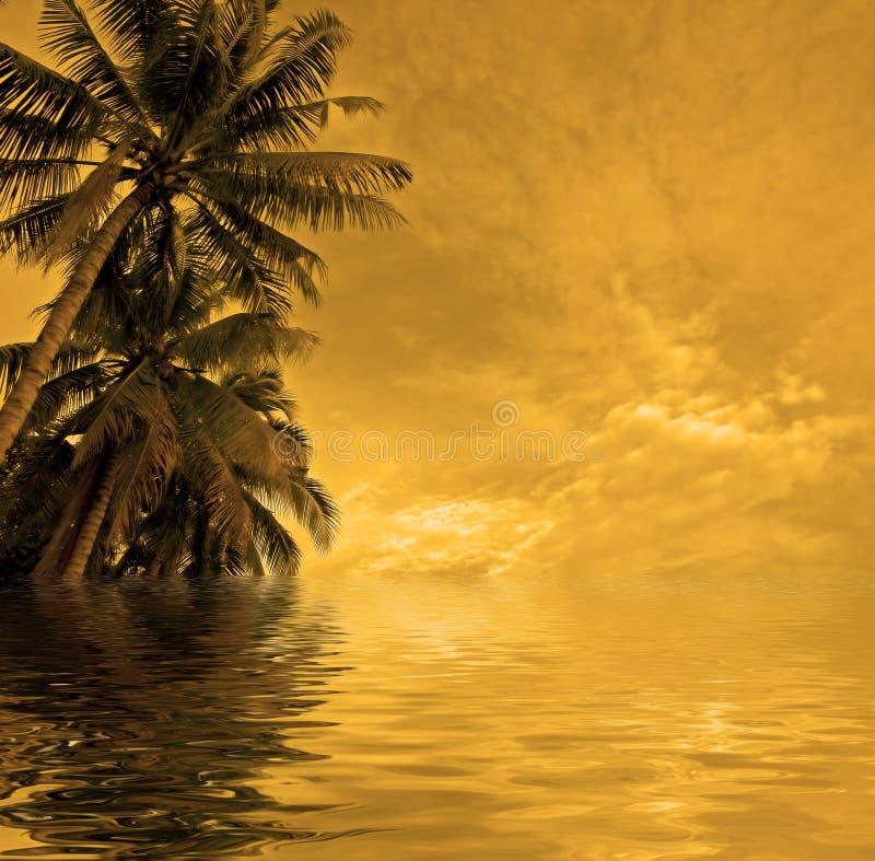 Het strand van de zonsondergang royalty-vrije stock fotografie