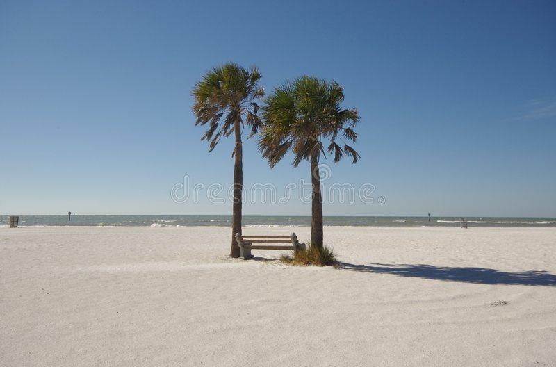 Het strand van Florida royalty-vrije stock fotografie