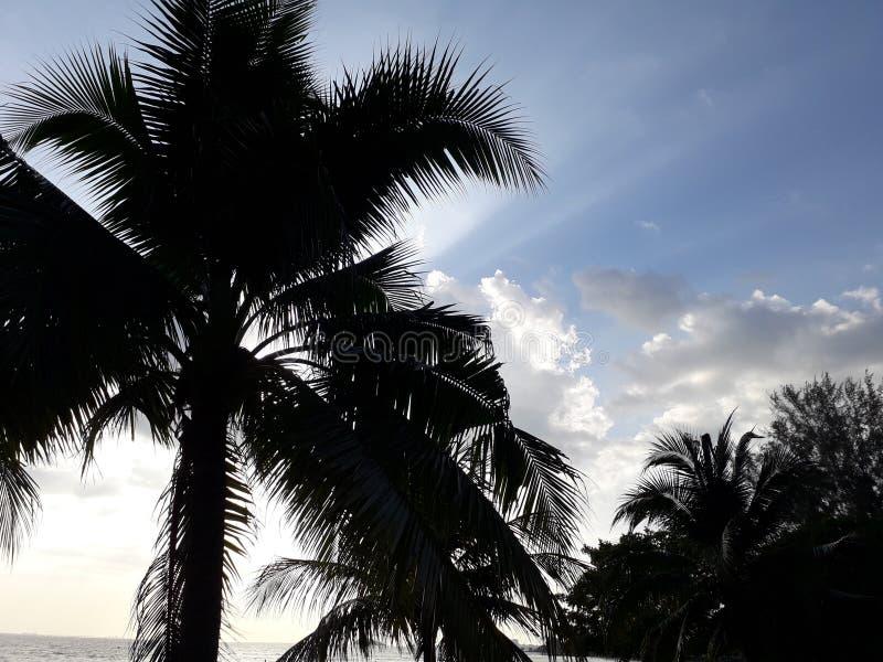 Het strand van haven dickson Maleisië royalty-vrije stock afbeelding