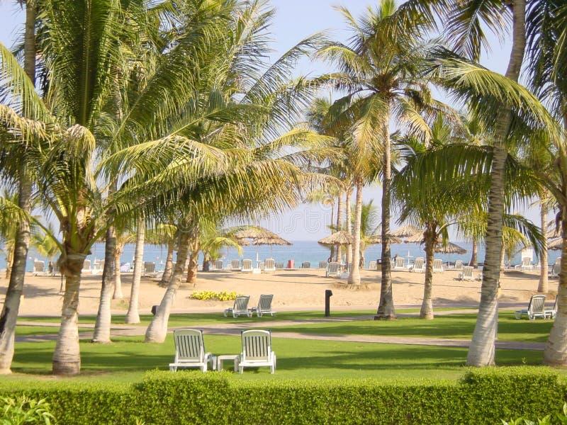 Het Strand van het hotel stock afbeeldingen