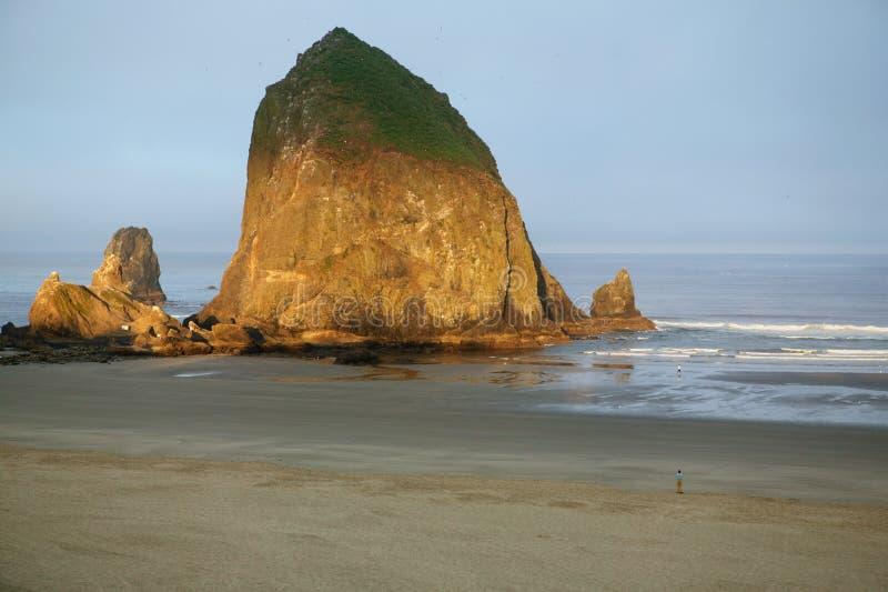 Download Het Strand Van Het Kanon, De Rots Van De Hooiberg, Oregon Stock Afbeelding - Afbeelding bestaande uit kustlijn, vogels: 31625