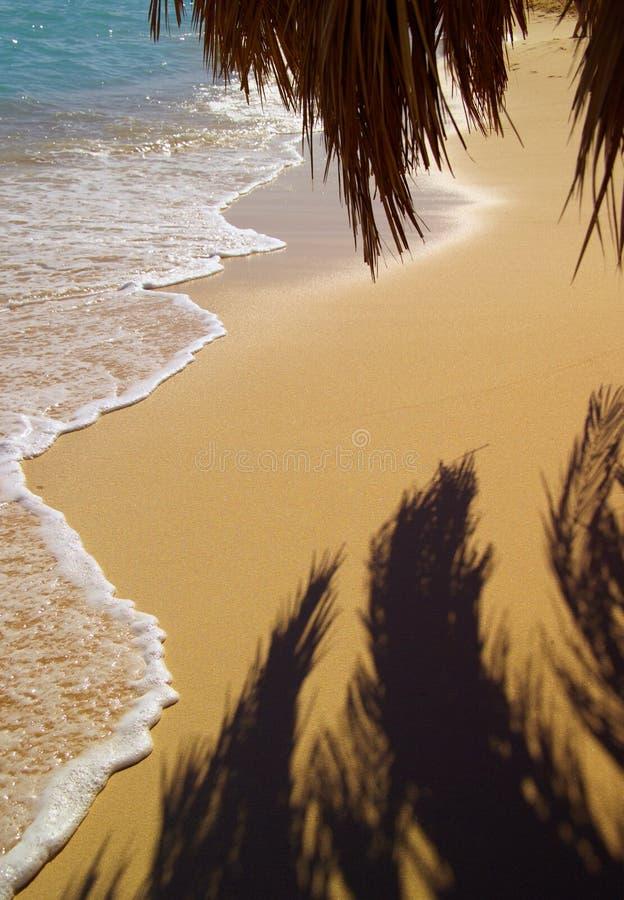 Het Strand Van Het Paradijs Stock Foto's