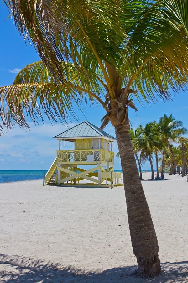 Het strand van het zand met palmen en lifegard toren stock foto's