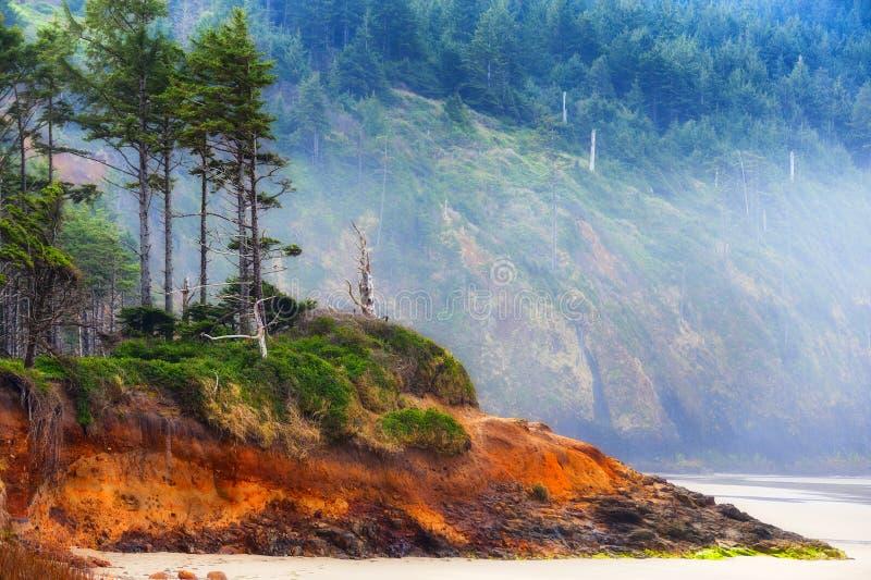 Het strand van het kaapvooruitzicht op de Kust van Oregon royalty-vrije stock afbeelding