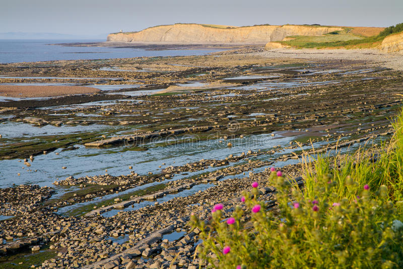 Het strand van Kilve in Somerset Engeland stock afbeeldingen