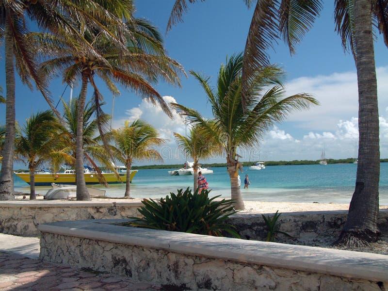 Het strand van Mexico stock foto