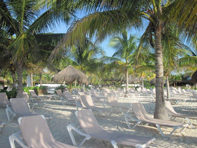 Het strand van Mexico in de vroege ochtend stock fotografie