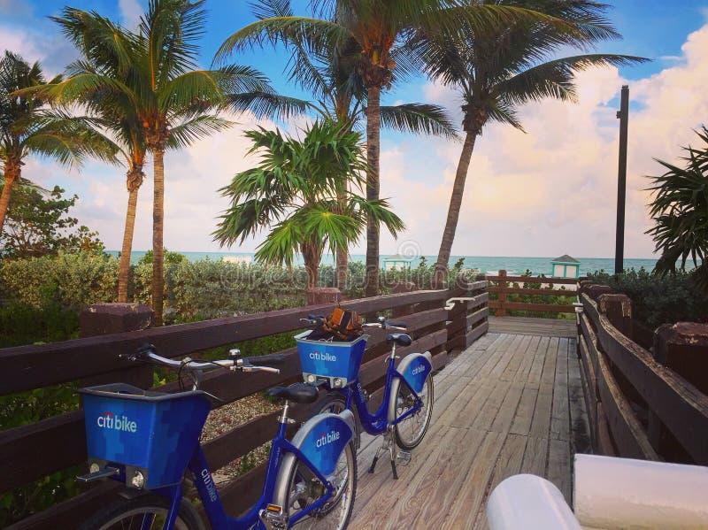 Het strand van Miami stock fotografie
