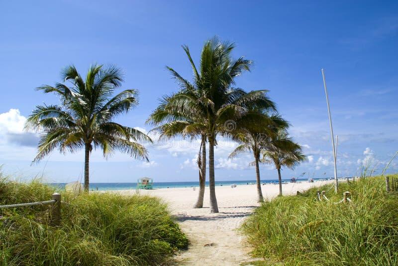 Het strand van Miami royalty-vrije stock afbeelding