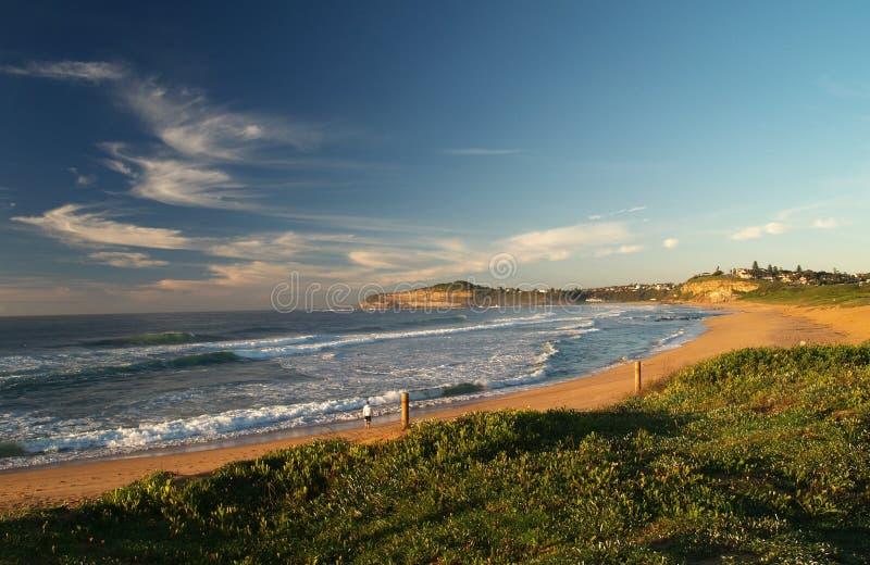 Het strand van Mona Vale stock afbeeldingen