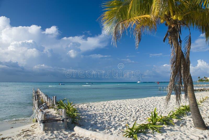 Het strand van Mujeres van Isla in Cancun, Mexico royalty-vrije stock afbeelding