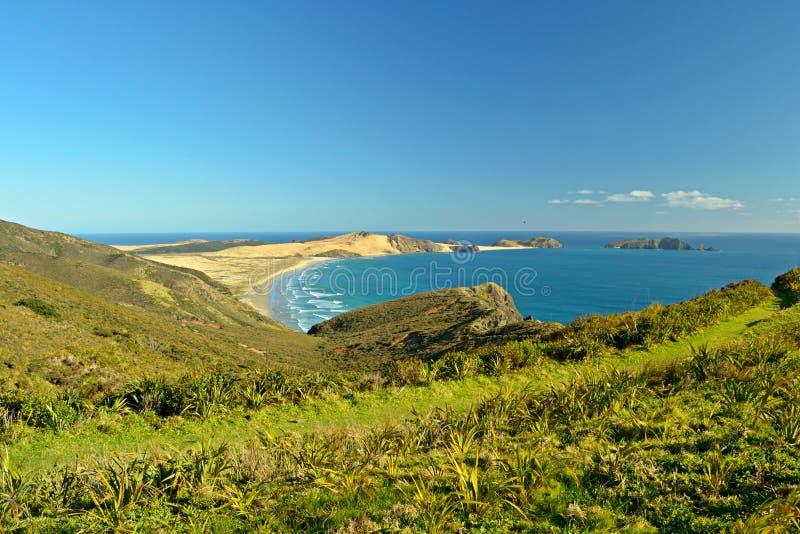 Het Strand van negentig Mijl bij Kaap Reinga royalty-vrije stock fotografie