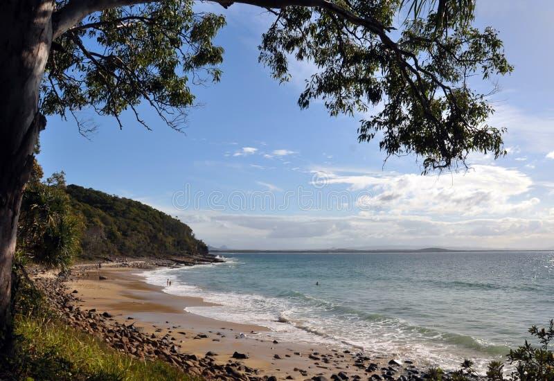 Het Strand van Noosa - Queensland, Australië royalty-vrije stock foto's