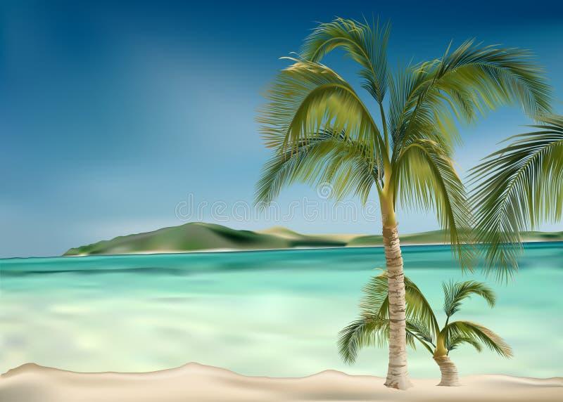 Het strand van palmen royalty-vrije illustratie