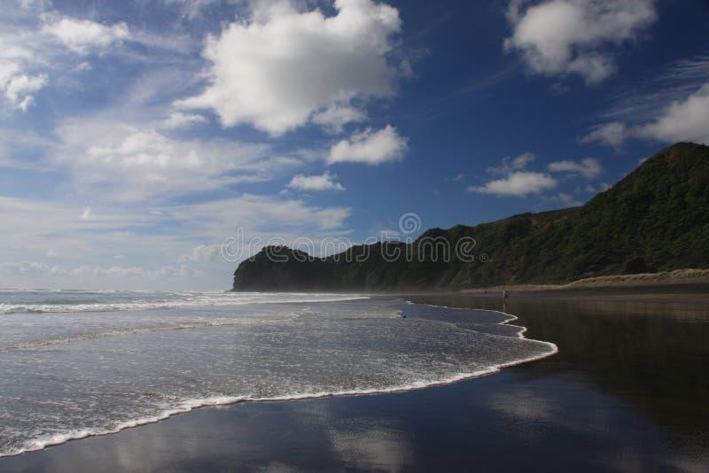 Het Strand van Piha stock foto's