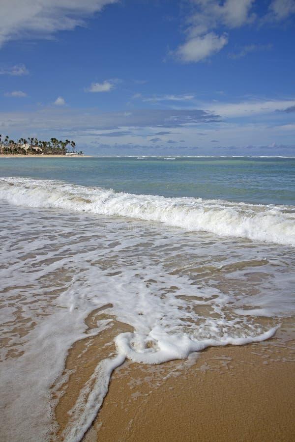 Het strand van Puntacana royalty-vrije stock foto's