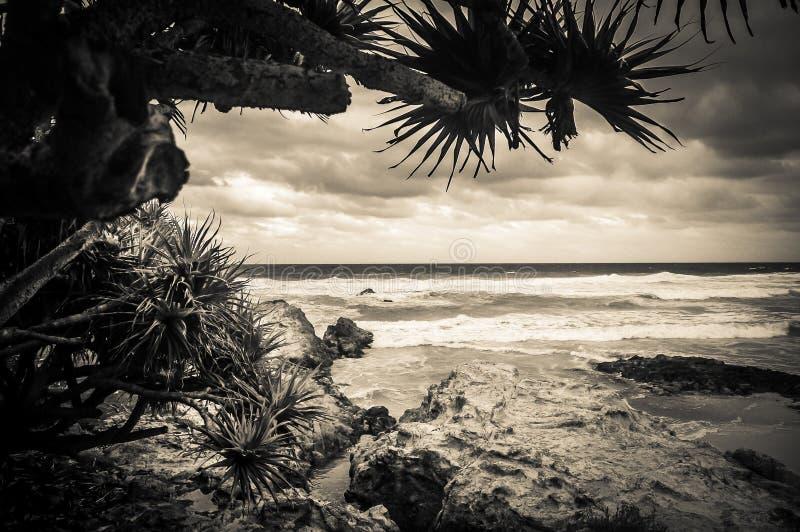 Het Strand van Queensland royalty-vrije stock afbeelding