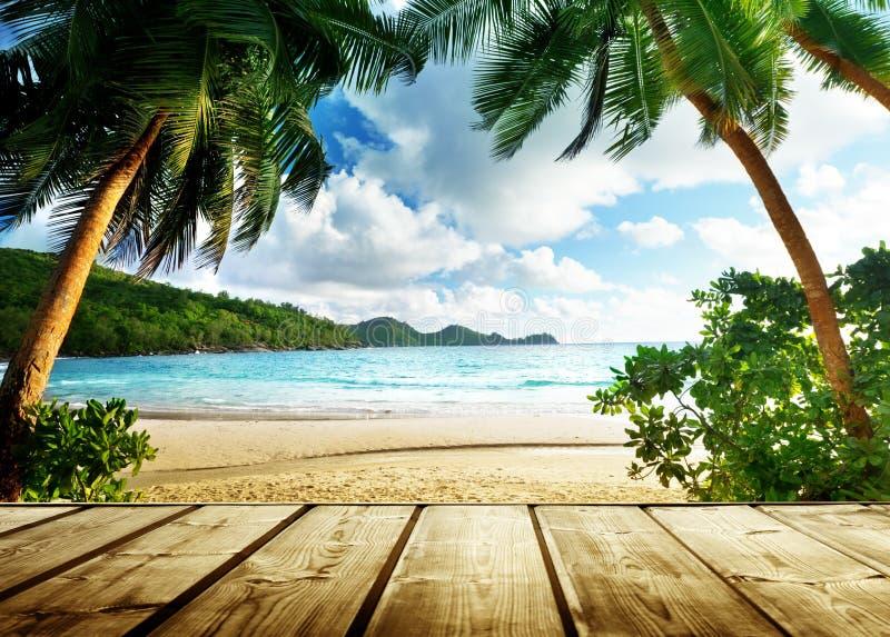 Het strand van Seychellen stock afbeeldingen