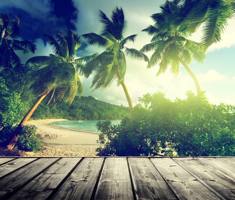 het strand van Seychellen royalty-vrije stock foto