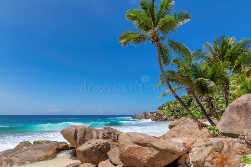 Het strand van Seychellen met mooie rotsen en turkooise overzees royalty-vrije stock fotografie