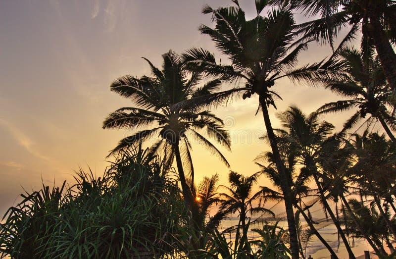 Het Strand van Sri Lanka van zonsondergangfoto royalty-vrije stock foto's