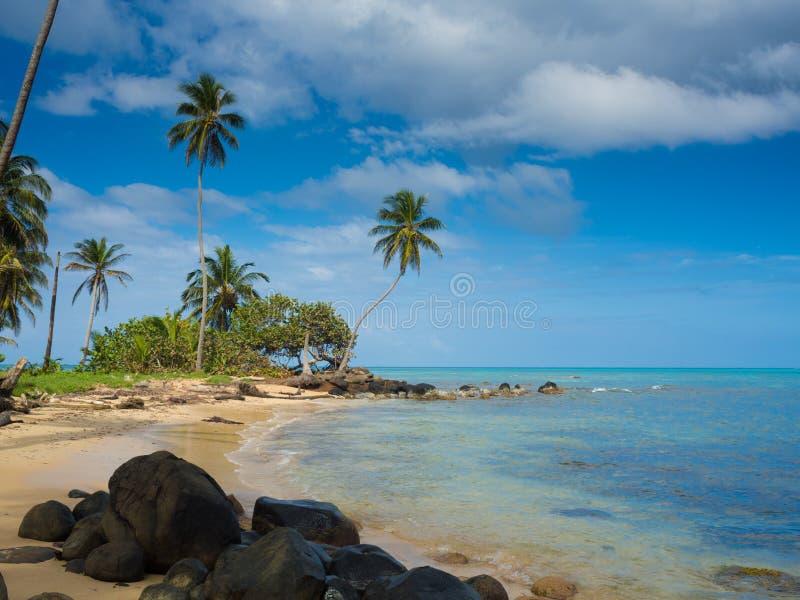 Het strand van Tropica royalty-vrije stock afbeeldingen