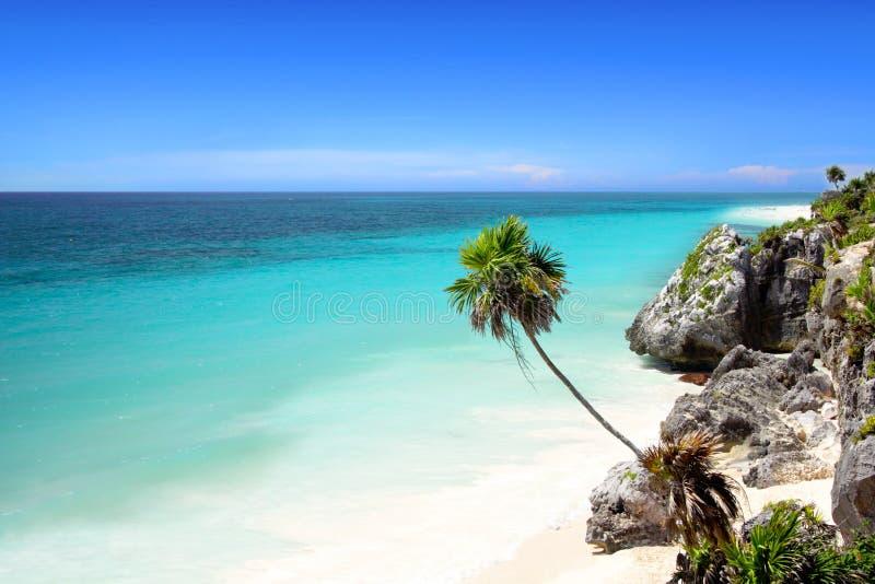 Het strand van Tulum stock afbeelding