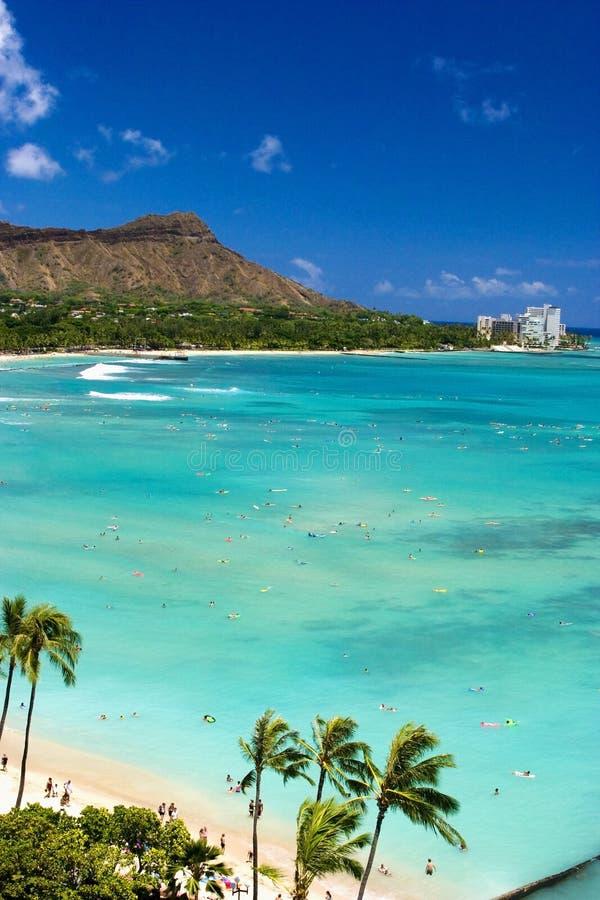 Het Strand van Waikiki, Oahu, Hawaï stock foto's