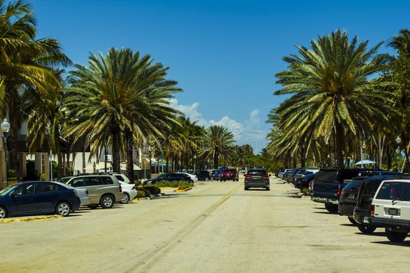 Het Strandparkeerterrein van Miami met palm royalty-vrije stock fotografie