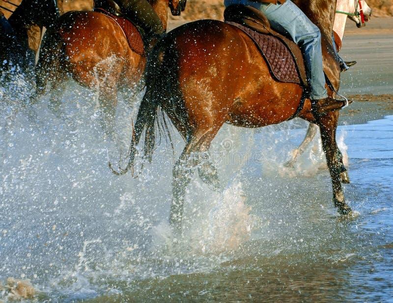 Het strandstijl van het paardrijden royalty-vrije stock fotografie