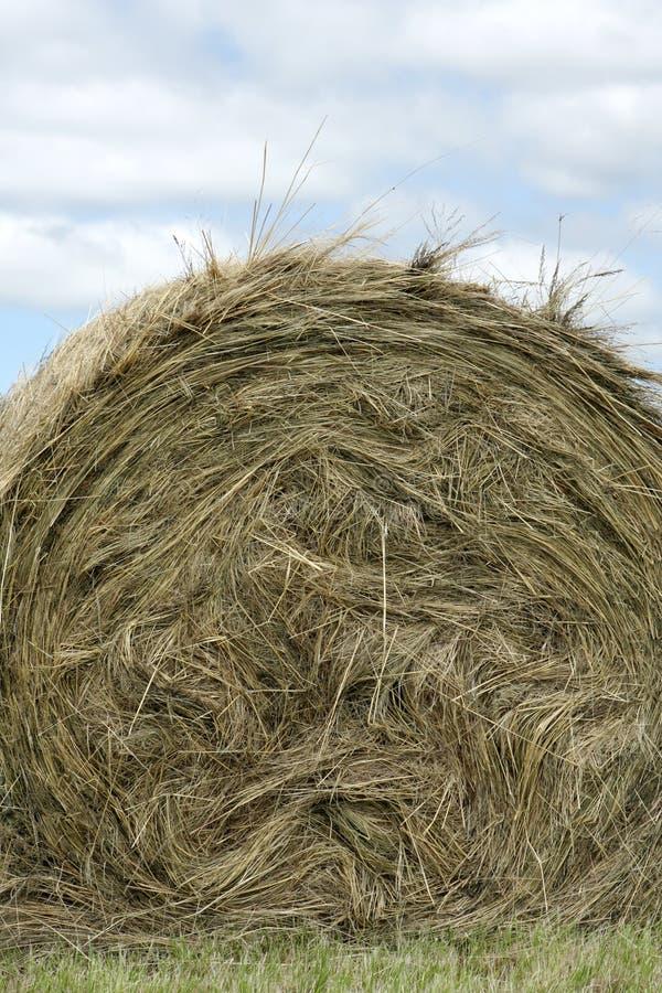 Het Stro van het landbouwbedrijf stock foto's