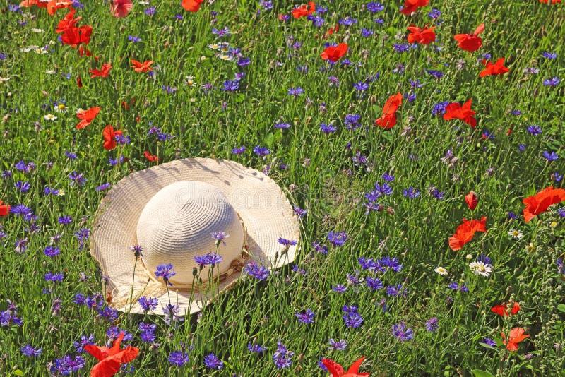 Het strohoed die van de dame in een kleurrijke wildflowerweide liggen royalty-vrije stock foto