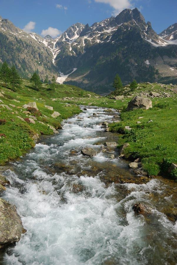 Het stromende bergstroom van de berg stock afbeelding