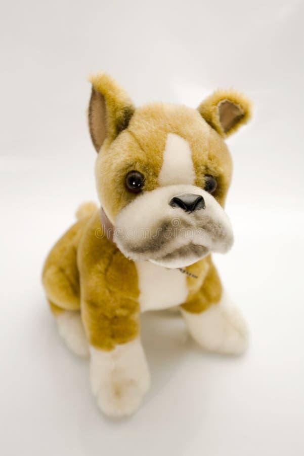 Het stuk speelgoed van de hond royalty-vrije stock foto