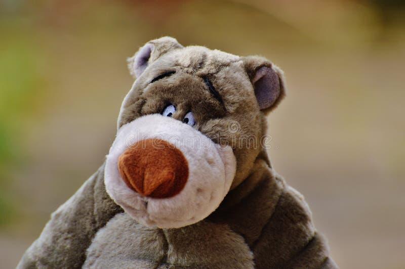 Het stuk speelgoed van zeer mooie kinderen voor jongens en meisjes royalty-vrije stock foto's