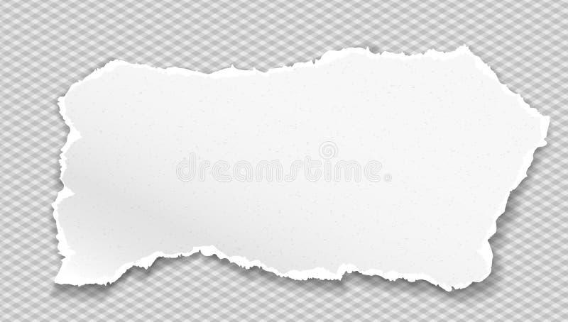 Het stuk van gescheurde korrelige document strook met zachte schaduw is op grijze geregelde achtergrond Vector illustratie vector illustratie