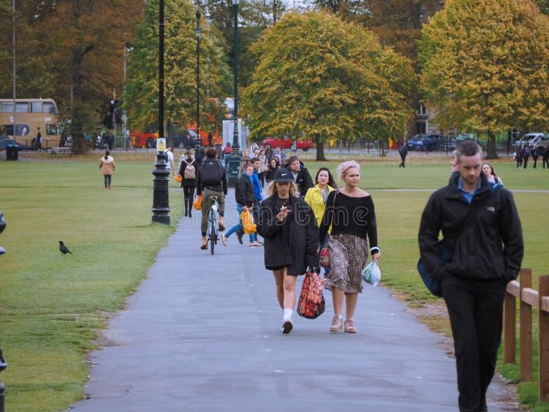 Het Stukpark van Parker in Cambridge stock afbeeldingen