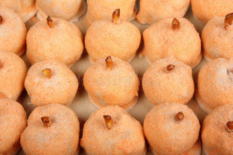 Het Suikergoed van de pompoenvakantie stock foto