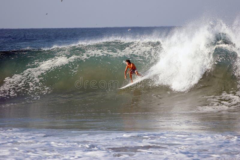 Het surfen stock foto